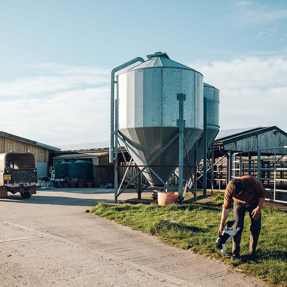 Visit the Farm
