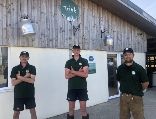 Educating young people at Trink Dairy